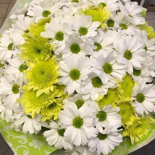 Зимняя хризантема: букеты цветов на заказ Flowwow