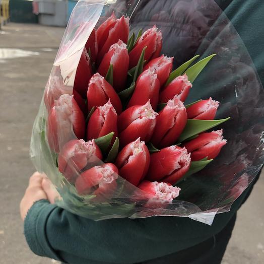 Букет из махровых Тюльпанов: букеты цветов на заказ Flowwow