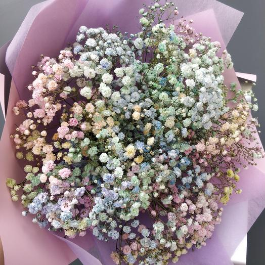 Гипсофила радужная пастельная: букеты цветов на заказ Flowwow
