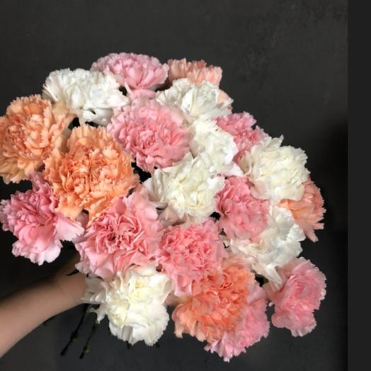 Bouquet 8 dianthus