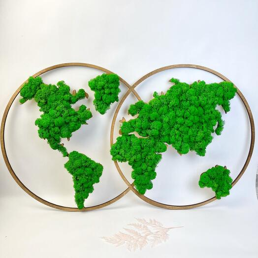 Карта мира на полушариях