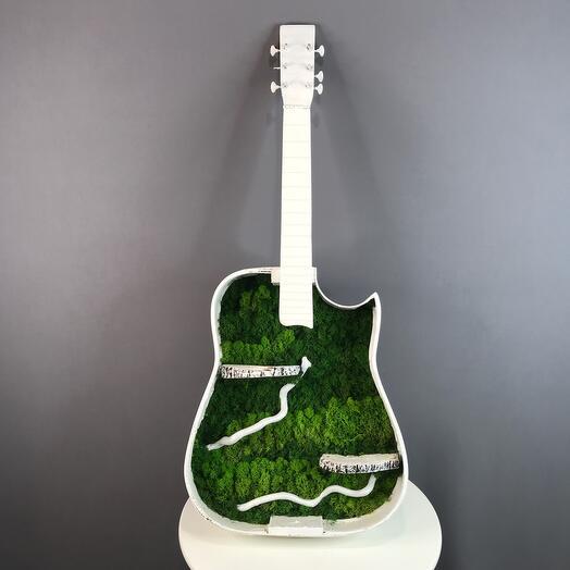 Verdisimo гитара