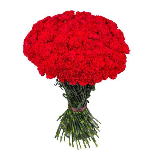 Букет из 51 гвоздики: букеты цветов на заказ Flowwow