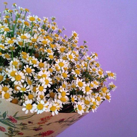 Монобукет из ромашек: букеты цветов на заказ Flowwow
