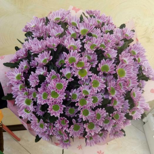 Букет из 15 розовых хризантем: букеты цветов на заказ Flowwow
