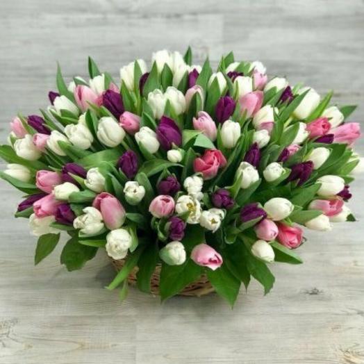 100 тюльпан в корзине