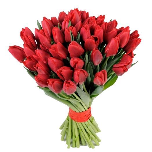 Букет из красных тюлпанов вышего сорта: букеты цветов на заказ Flowwow