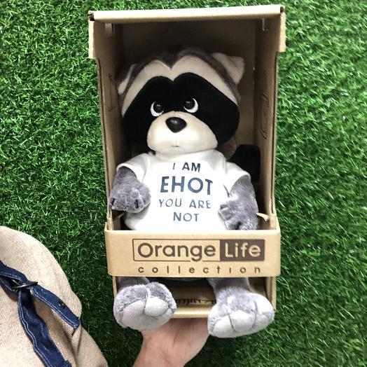 Мягкая игрушка Енот: букеты цветов на заказ Flowwow