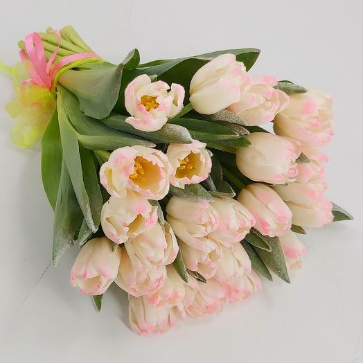 Заснеженные тюльпаны 25