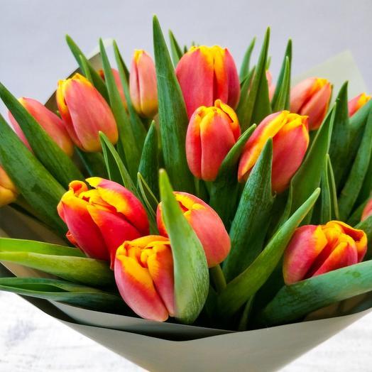 19 огненных тюльпанов