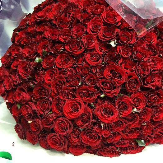 299 роз Эль Торо: букеты цветов на заказ Flowwow