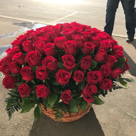 Розы Эквадор 101