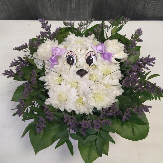 Собачка из цветов в коробке