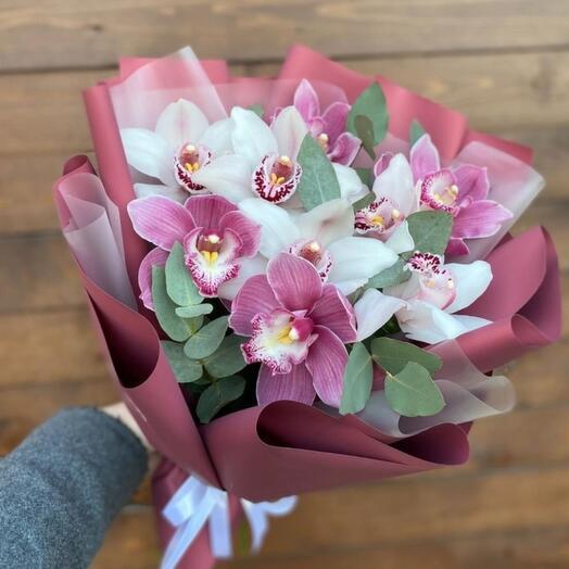 Красивые орхидеи