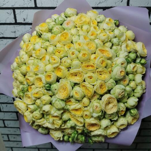 Роза-ранункулюс