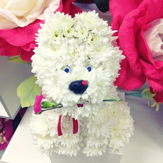 """Собачка из цветов """"Щеночек"""": букеты цветов на заказ Flowwow"""
