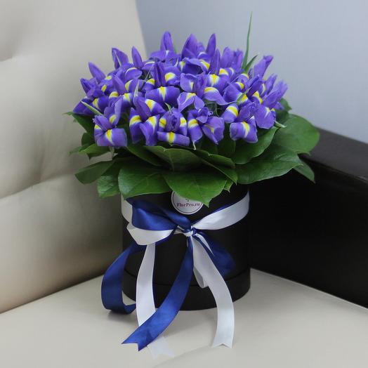 25 синих ирисов в шляпной коробке: букеты цветов на заказ Flowwow