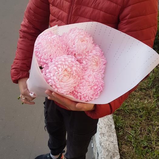 Крымская хризантема