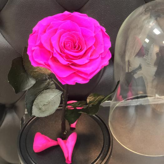 Stabilized rose in the flask