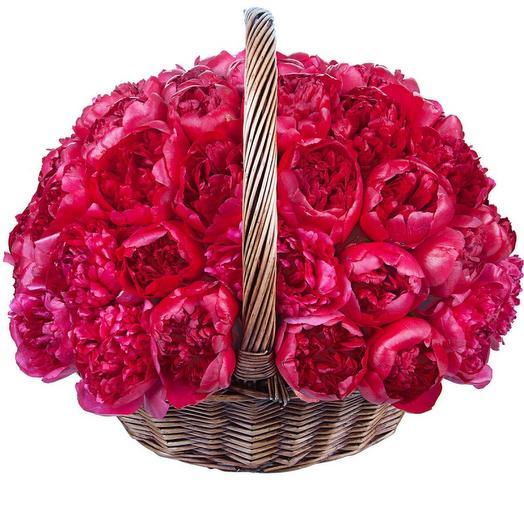 Пионы красные в корзине 51 шт: букеты цветов на заказ Flowwow