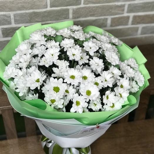 Хризантемы-Ромашки