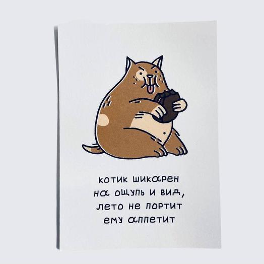 Открытка почтовая Котик шикарен