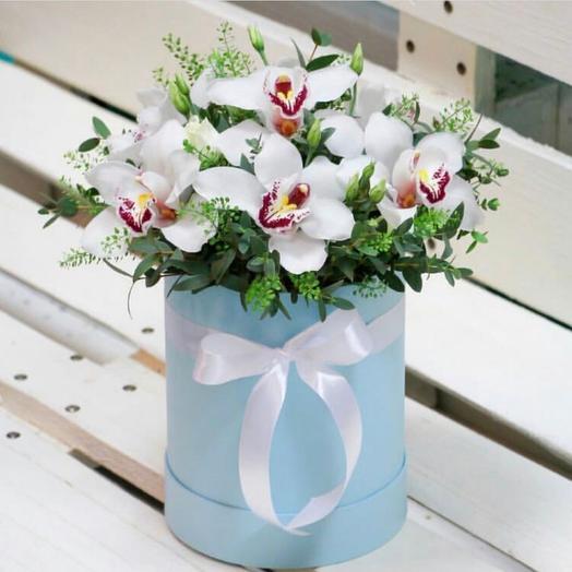 Коробка с орхидеями. Цветы в коробке