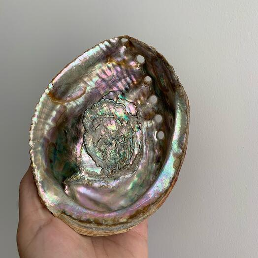 Ракушка абалон (для благовоний и украшений)