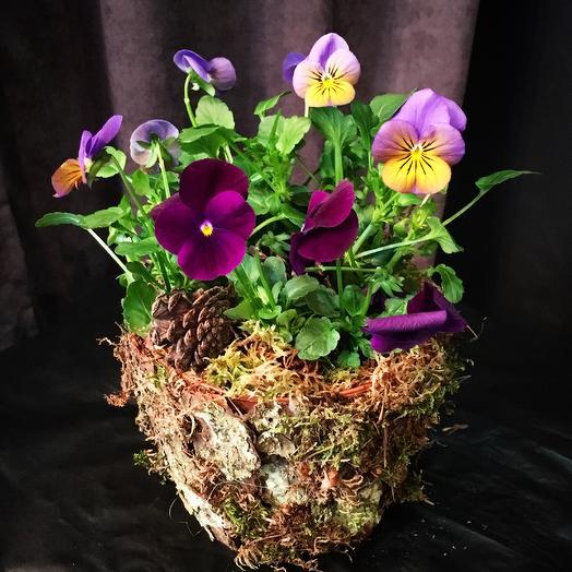 Палитра красок: букеты цветов на заказ Flowwow