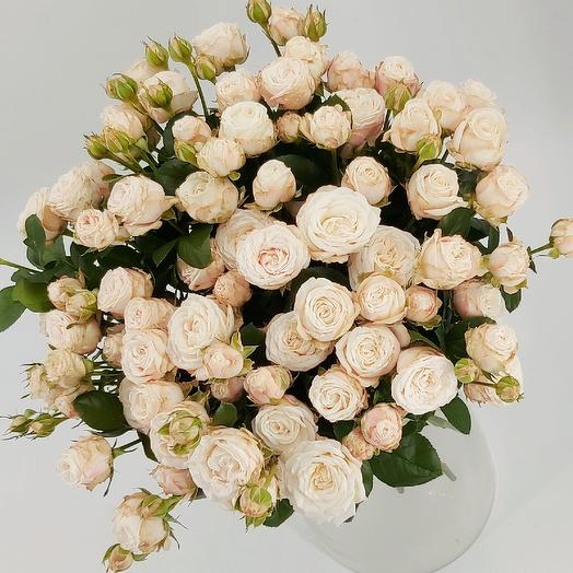 19 пионовидных кустовых роз Бомбастик: букеты цветов на заказ Flowwow