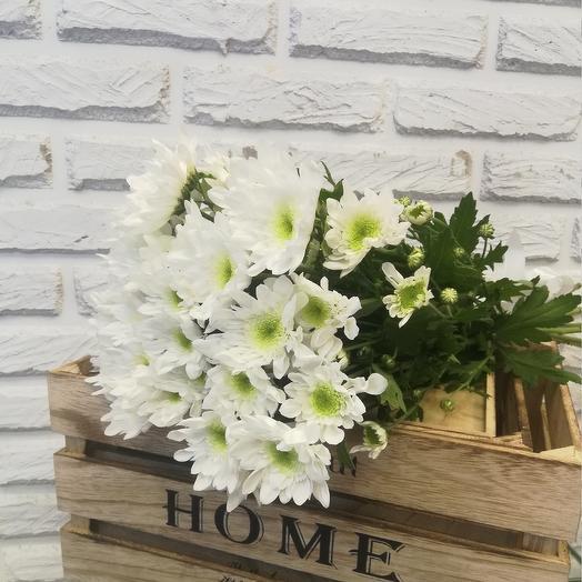 7 белых кустовых хризантем