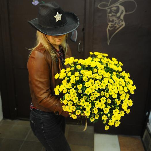 Букет из сантини: букеты цветов на заказ Flowwow