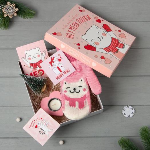 "Подарочный набор ""Meow"" варежки р-р 19 и акс (4 предм)"