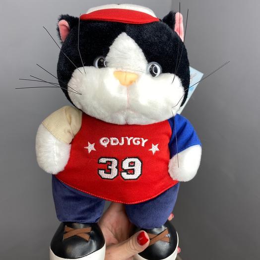 Котик барсик