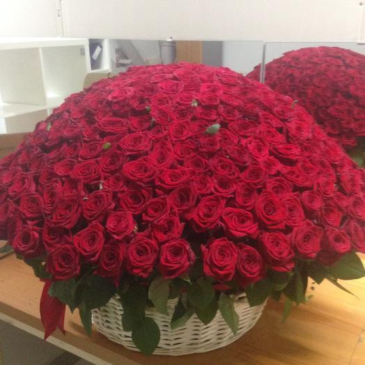 Корзина с 301 ароматной розой Ред Наоми: букеты цветов на заказ Flowwow