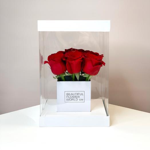 Прозрачный куб с розами S: букеты цветов на заказ Flowwow