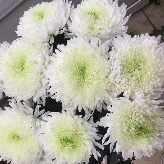 Букет «Белый Антонов»: букеты цветов на заказ Flowwow