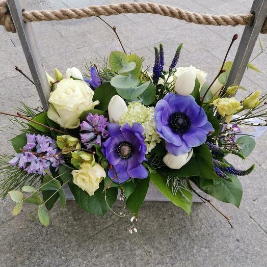 Ящик с анемонами: букеты цветов на заказ Flowwow