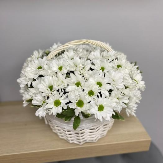 Корзиночка с хризантемой ромашковидной
