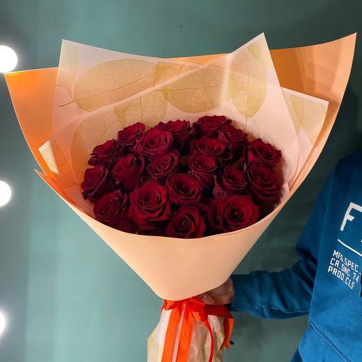 Розы «Эксплорер»