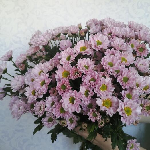 Букет из 15 хризантем Сантини