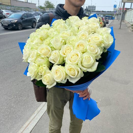 51 белоснежная роза