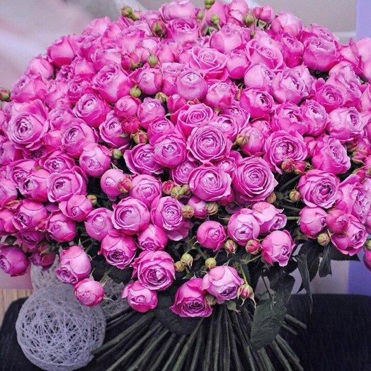 101 Кустовая Пионовидная Роза