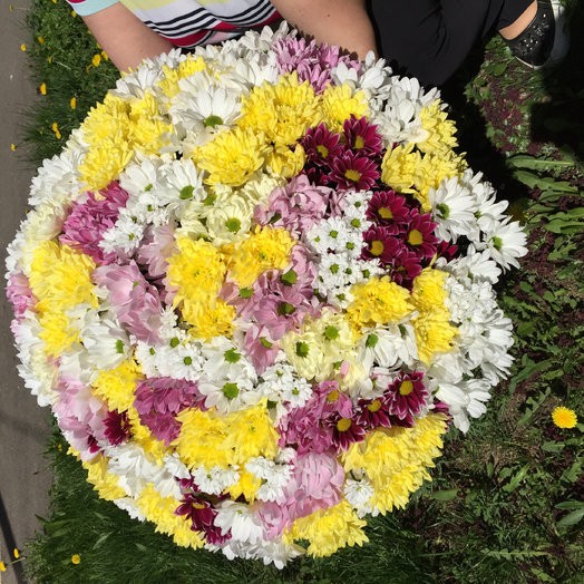 Солнечное Облако : букеты цветов на заказ Flowwow