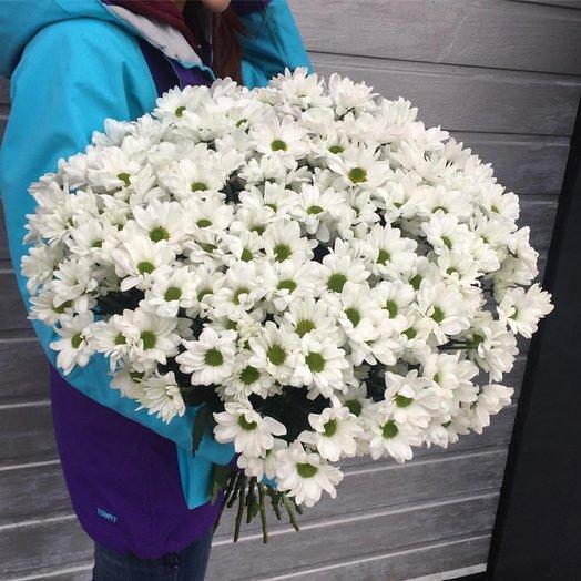 Огромный букет из хризантем: букеты цветов на заказ Flowwow