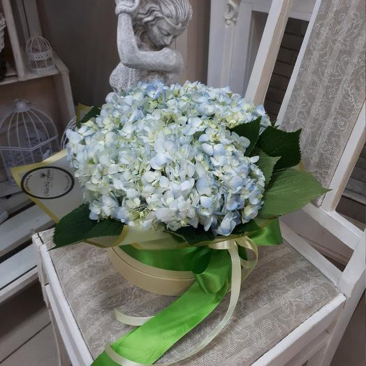 Шляпная коробка с гортензиями: букеты цветов на заказ Flowwow