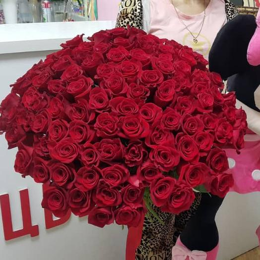101 rose 70 cm