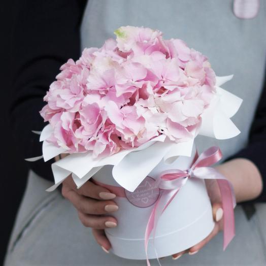 Комплимент Дня: букеты цветов на заказ Flowwow