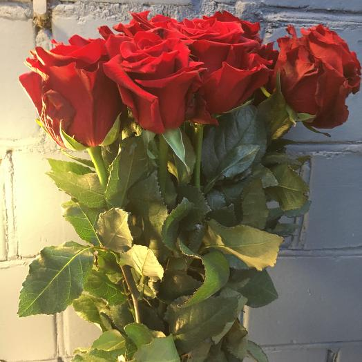 Роза эксплорер 15 шт: букеты цветов на заказ Flowwow