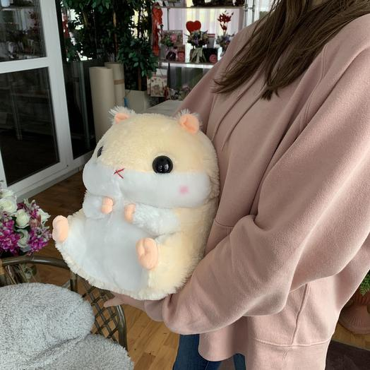 A hamster with a blanket